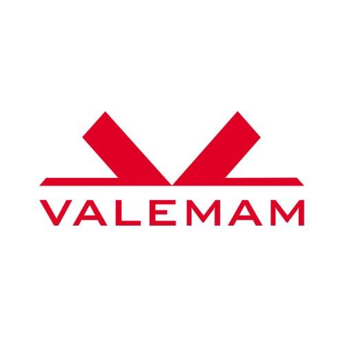 Logo VALEMAM